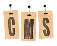 Content management Systems logo in the form of a set of hang-tags with the letters CMS